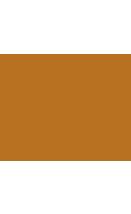 hotel diplomat logo